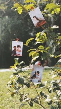 casamento no parque-11